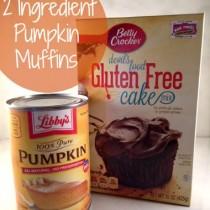2 ingredient gluten free chocolate pumpkin muffins